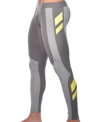 Pro Aktiv Compression Tights Leggings Titanium
